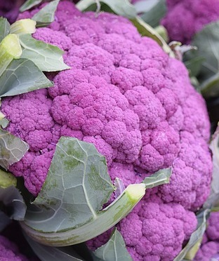 purple_cauliflower-1218701_640